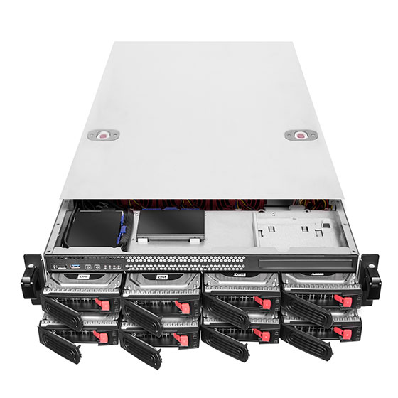 "Supports eight 2.5""/3.5"" SAS/SATA HDD/SSD hot-swap trays"